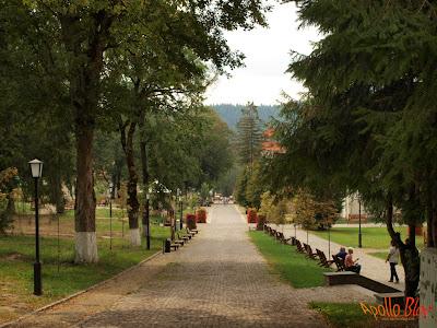 Statiunea Borsec