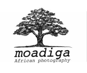GALERIE MOADIGA