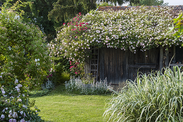 Hortibus jardins du gers voyage bordeaux du 4 au 8 for Jardin septembre 2015