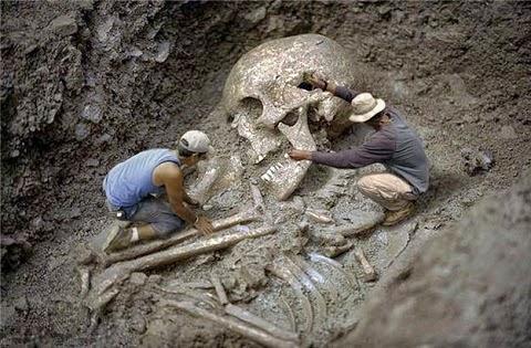 tornasse públicos documentos do final do século XIX e início do XX relacionados à descoberta de esqueletos de humanos gigantes.