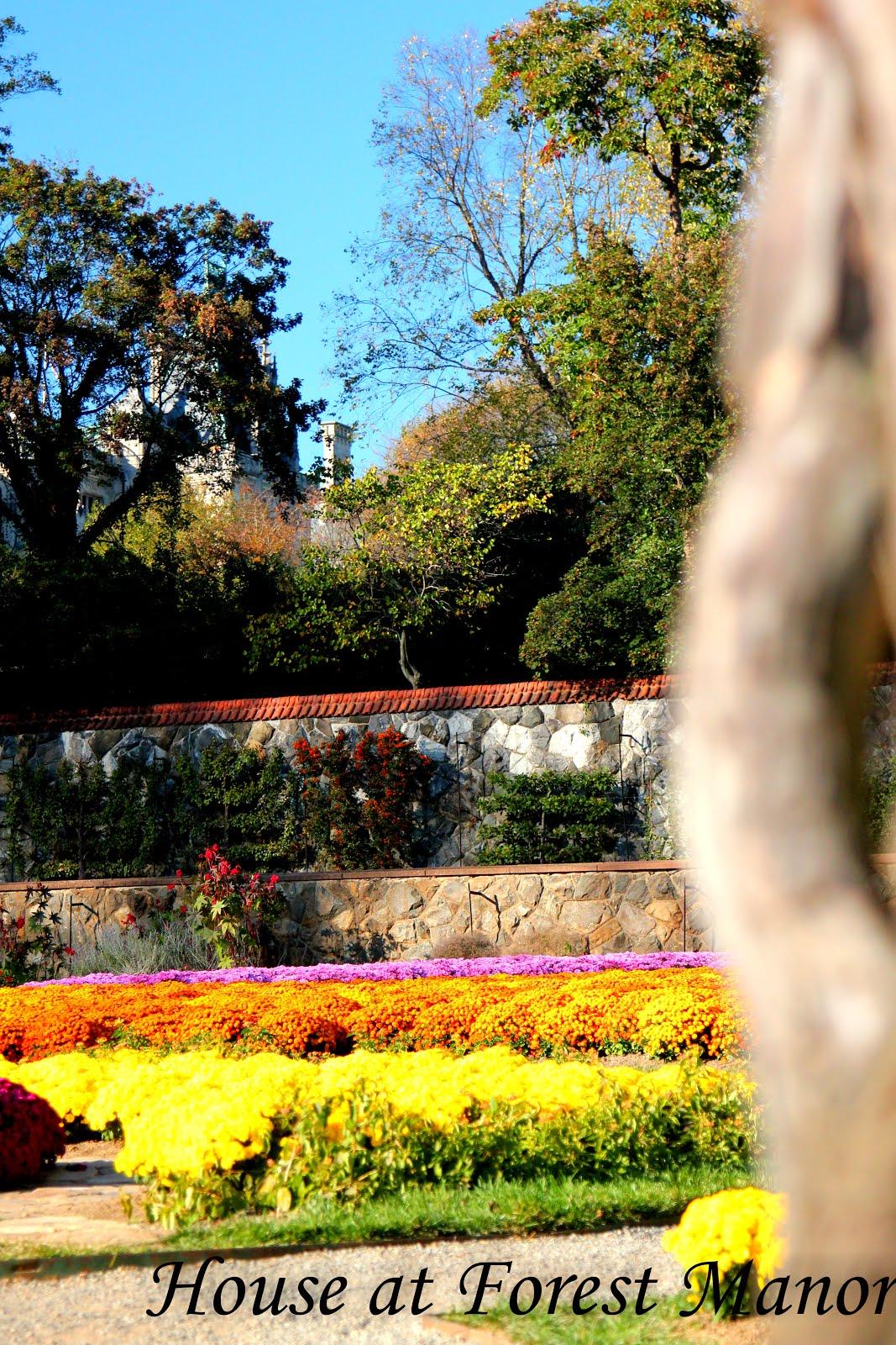 Fall in Biltmore Gardens