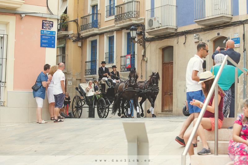Carruaje de Caballos Alicante
