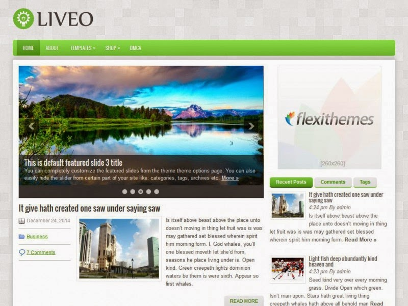 Liveo - Free Wordpress Theme