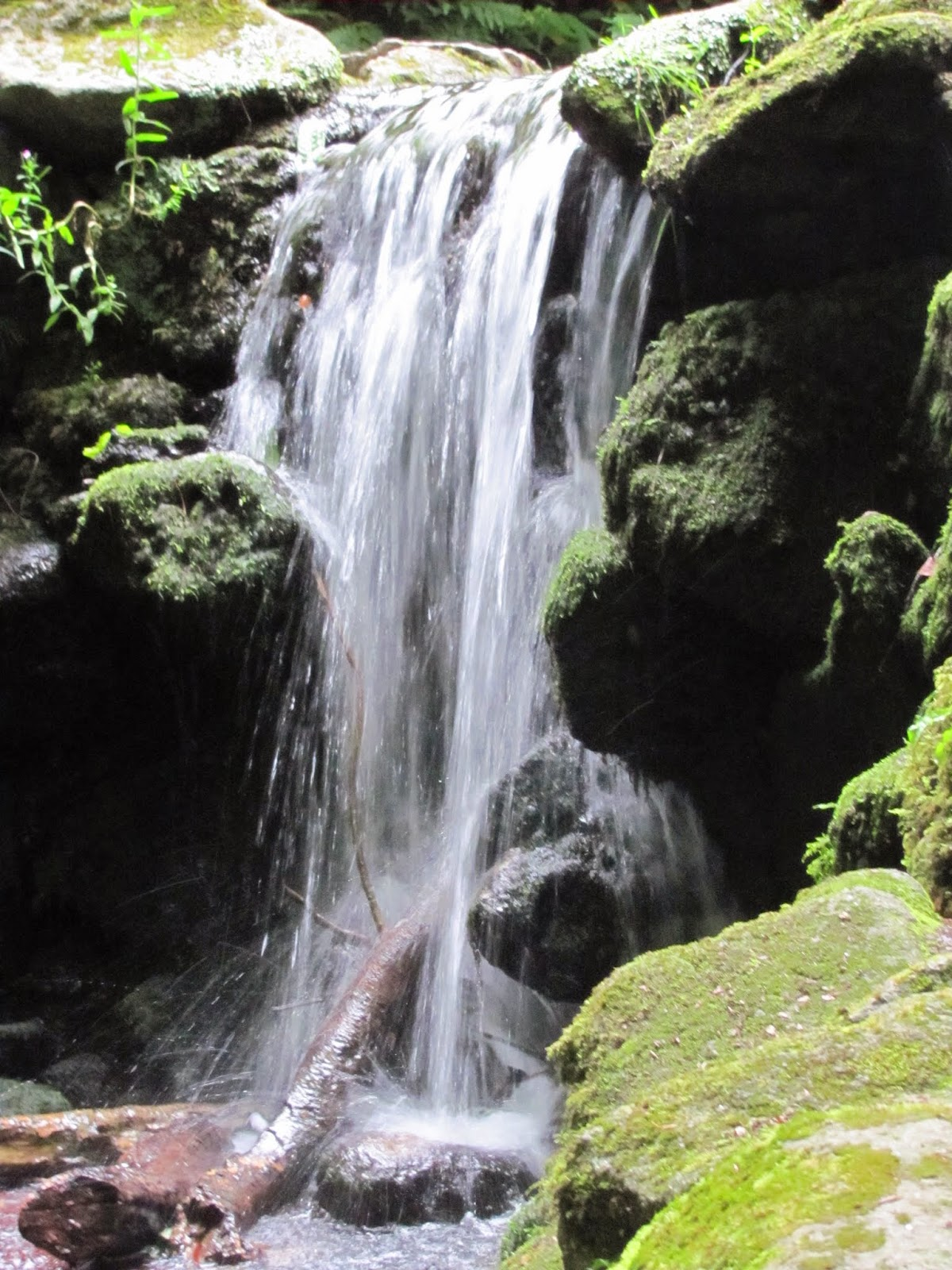 Waterfall 3 Marlay Park Dublin, Ireland