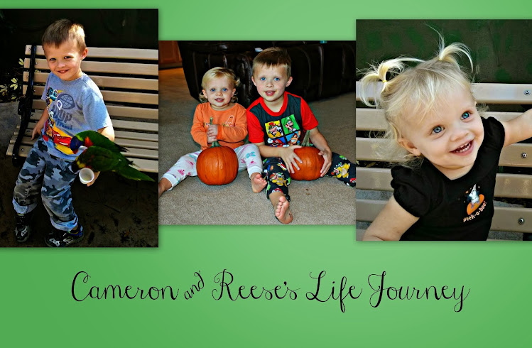 Cameron & Reese