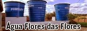 ÁGUA FLORES DAS FLORES