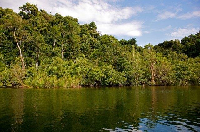 Montañas-Cardamomo-Camboya