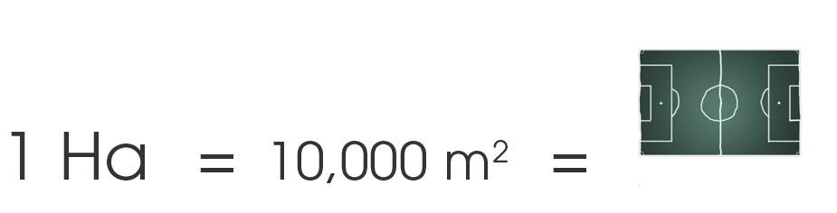 Cuantos metros en una hectarea cuanto cuanto equivale una for Cuanto es 35 metros cuadrados