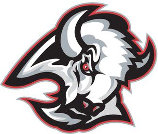 Buffalo Bison Football