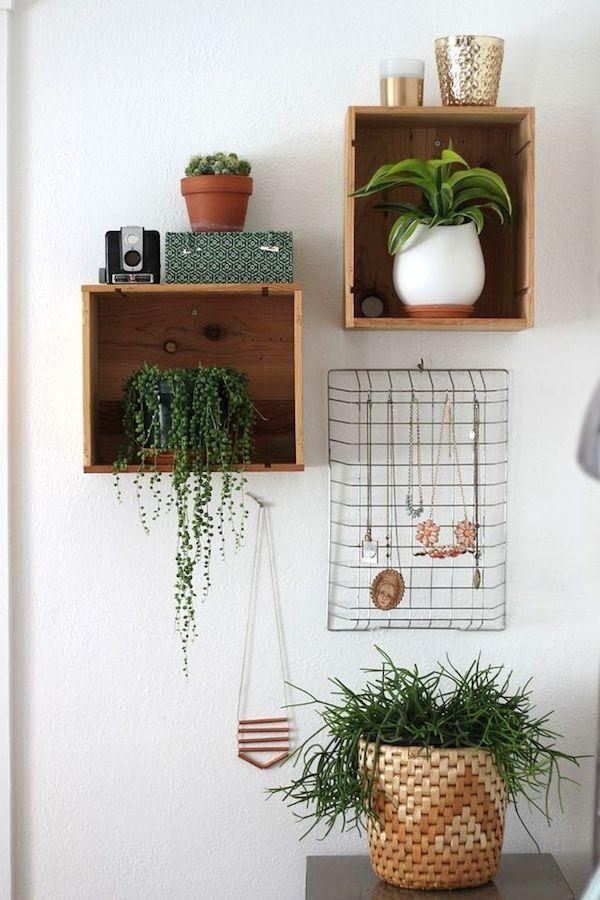 ahora bien cuando ya tenemos elegidas las que nos gustan cmo en nuestra decoracinyo te traigo formas para decorar con plantas segn el