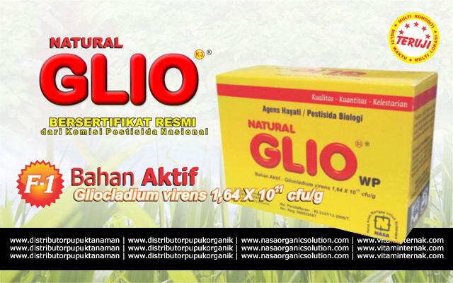 Agensia Hayati Tricoderma Gliocladium Dari PT. Natural Nusantara