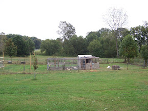 First chicken house (2007)