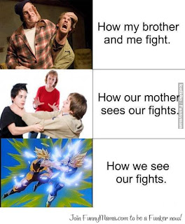 HOW WE FIGHT