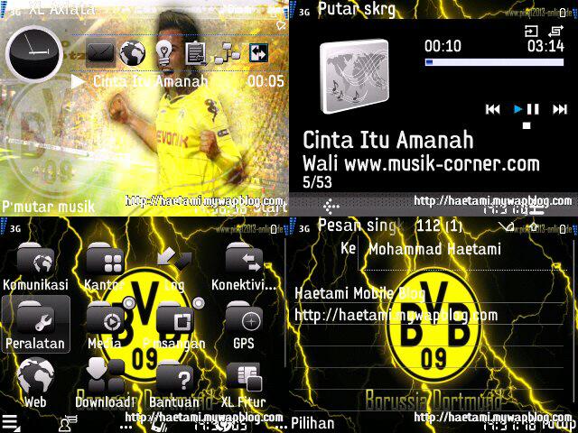 Tema Nokia Asha 205