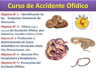 CURSO DE ACCIDENTE OFÍDICO