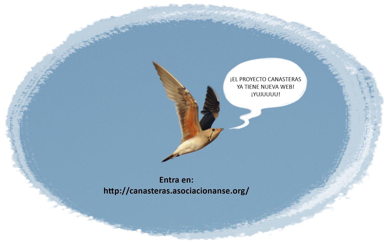 Web del Proyecto Canasteras