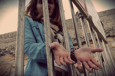 Que uno busca la libertad sólo cuando se siente prisionero