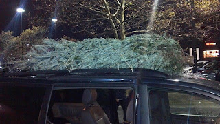 christmas tree on roof of minivan