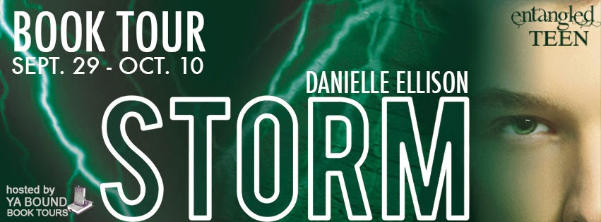 http://yaboundbooktours.blogspot.com/2014/09/blog-tour-sign-up-storm-salt-2-by.html