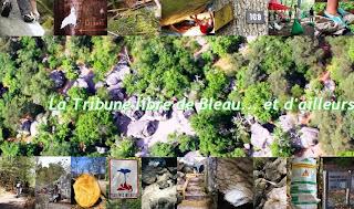 la tribune libre des sites de Fontainebleau