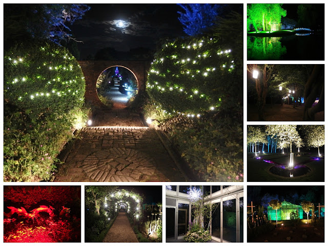 A collage of the night garden at West Green House - some of the magical lighting installed so opera goers can picnic and take a stroll around the gardens