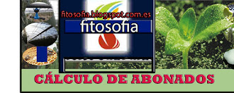 CALCULO DE ABONADOS