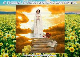 6ª TREZENA-NOSSA SENHORA ROSA MÍSTICA