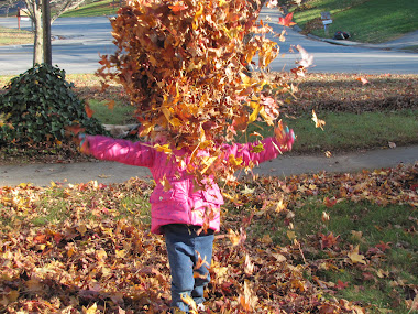 Having Fun in a Neighbor's Leaves!
