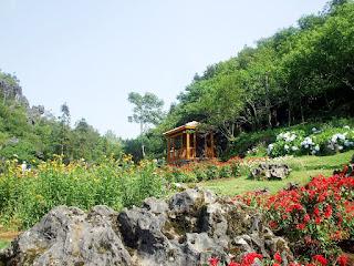 Ham Rong mountain1