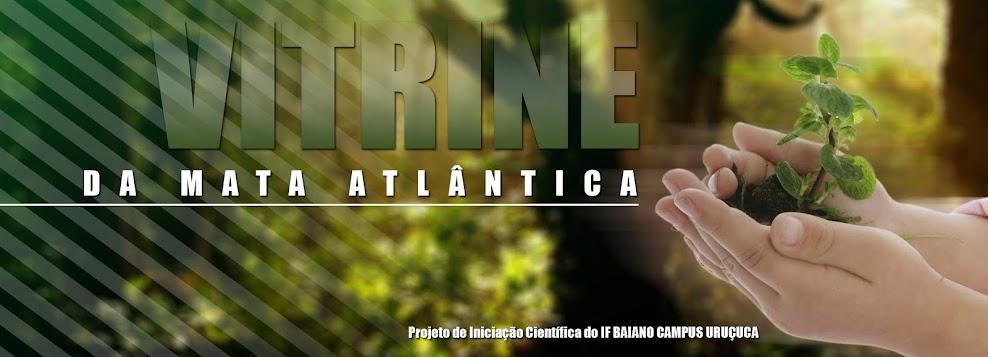 Vitrine da Mata Atlântica