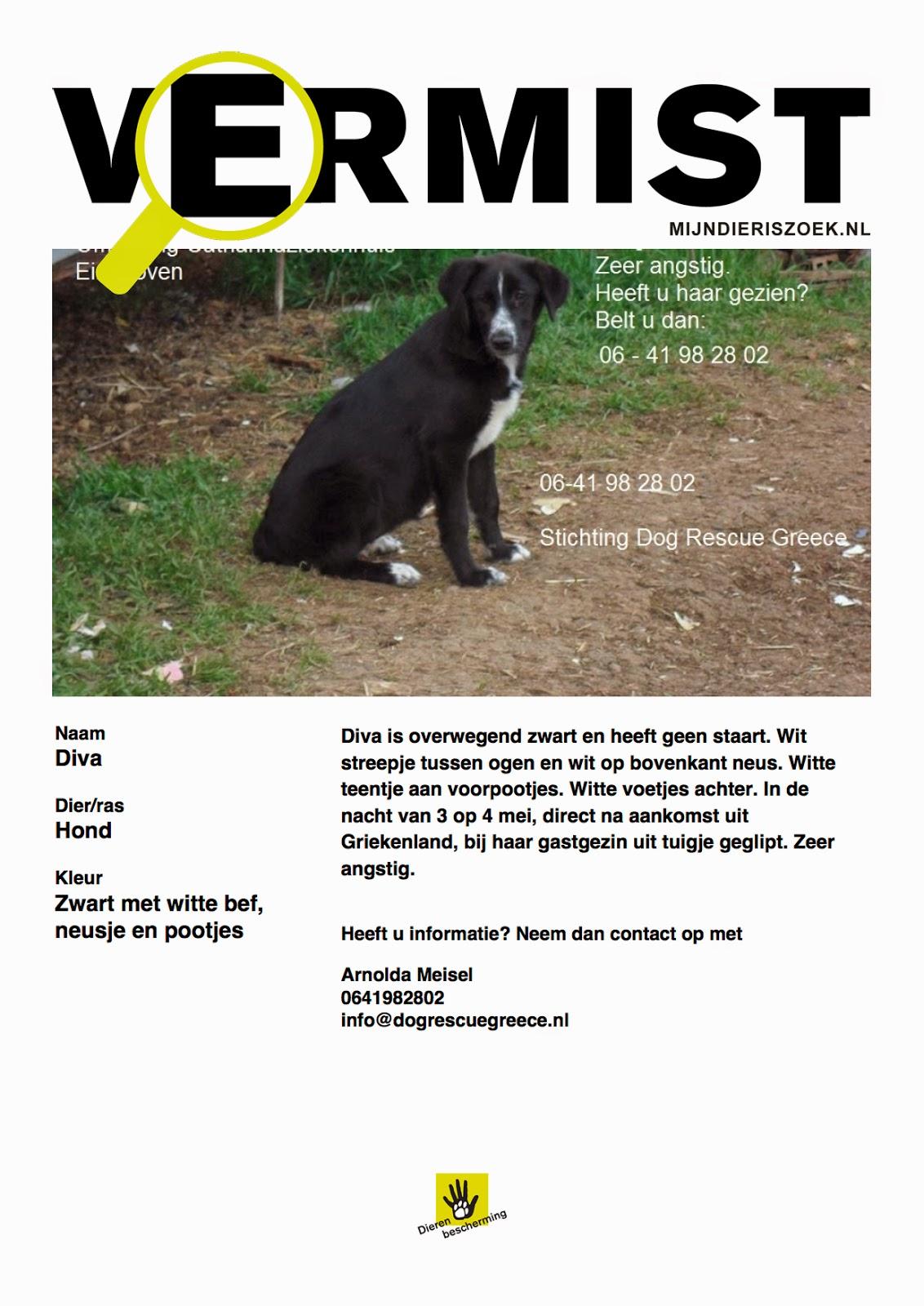 dier vermist poster