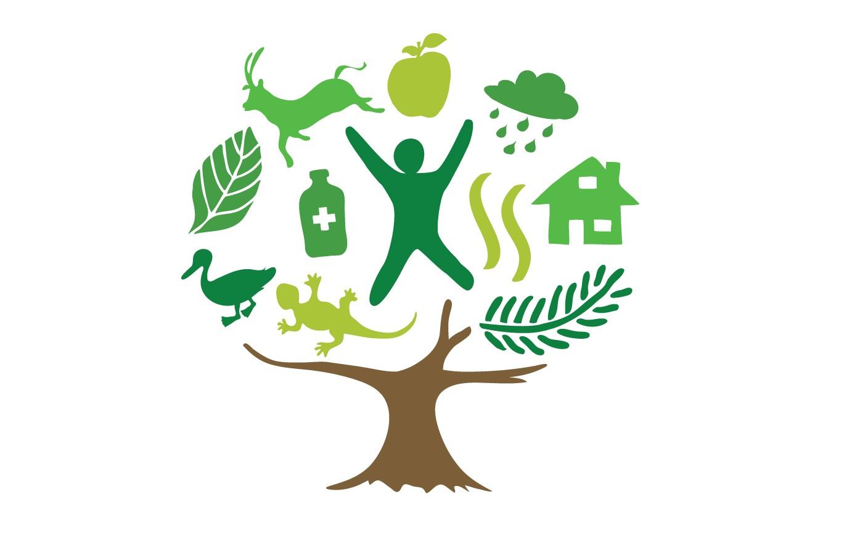 Resultado de imagen para educación ambiental semarnat