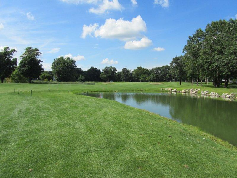 golfing at pebble creek