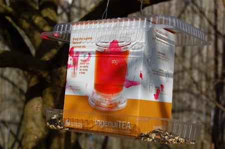 Build a bird feeder from recyclables.