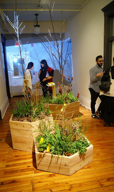 Grow Op 2015 Art and Landscape Exhibition at Gladstone Hotel in Toronto, west queen street, culture, artmatters, exhibit, enviroment, ontario, the purple scarf, earth day, melanie.ps, trees, plants, urban, contemporary, the language, jasmeen kaur bains, yi zhou