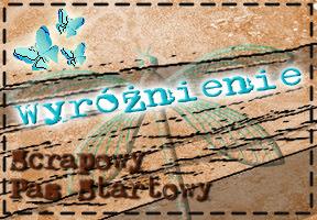 http://scrapowypasstartowy.blogspot.com/2013/07/wariacje-zakonczone.html
