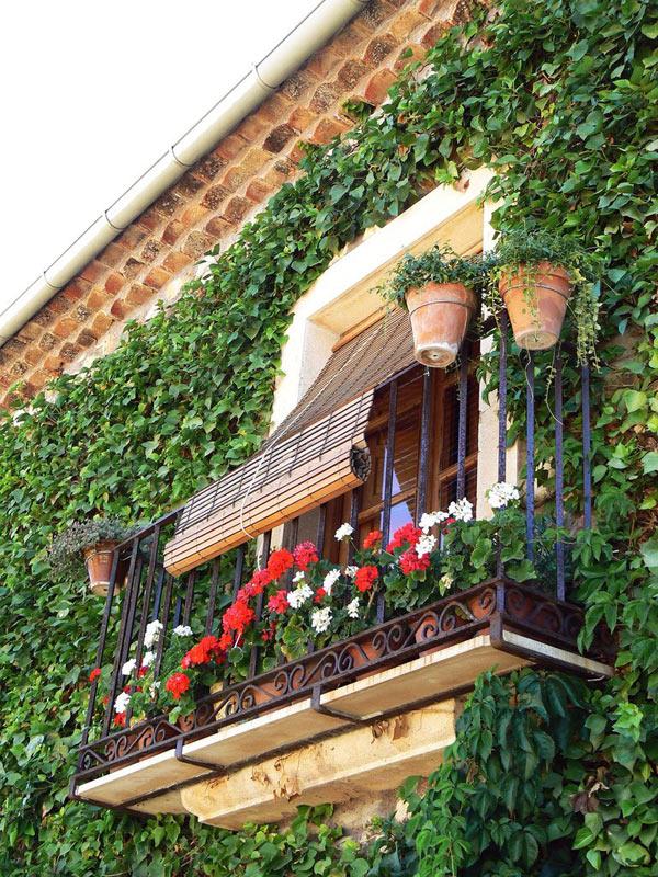 цветущие балконы, цветы на балконе