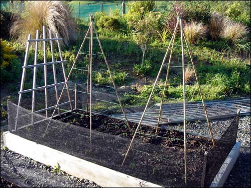 Bamboo Garden Stakes9