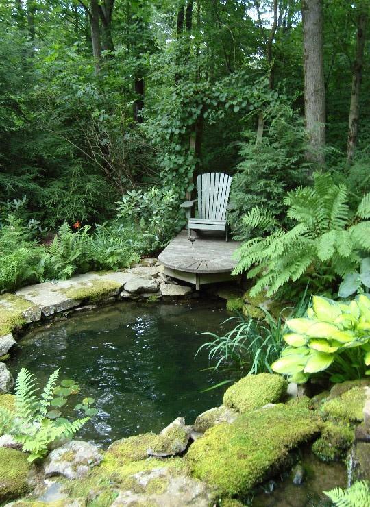 Fotos de jardines acu ticos jard n y terrazas for Jardin acuatico