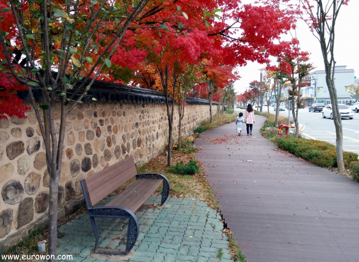 Paseo otoñal en Buyeo en Corea del Sur