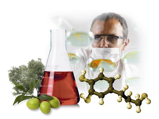 Mengenal Zaitun hydroxytyrosol