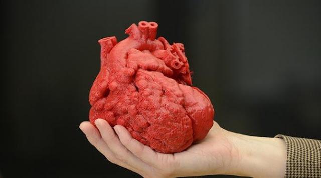 nilah 9 Jenis Penyakit atau Gangguan Jantung yang Berbahaya dan Penyebabnya