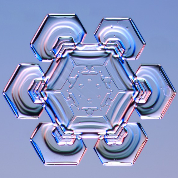 A close up photo of a snowflake.