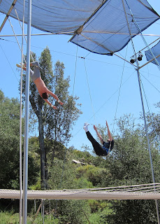 Noah dropping to the net after a knee hang grab on the flying trapeze.