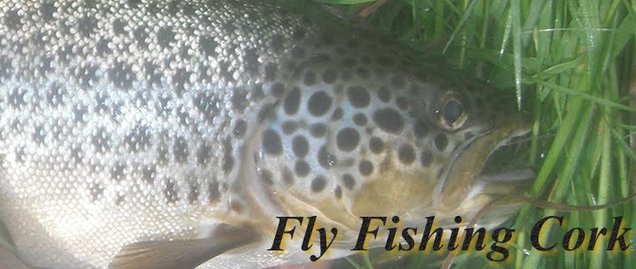 Fly Fishing Cork - Fly Fishing Ireland