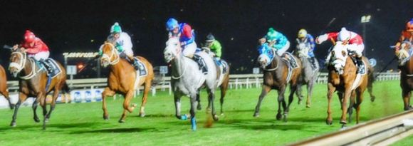 Turffontein Night 22nd January Best Bets