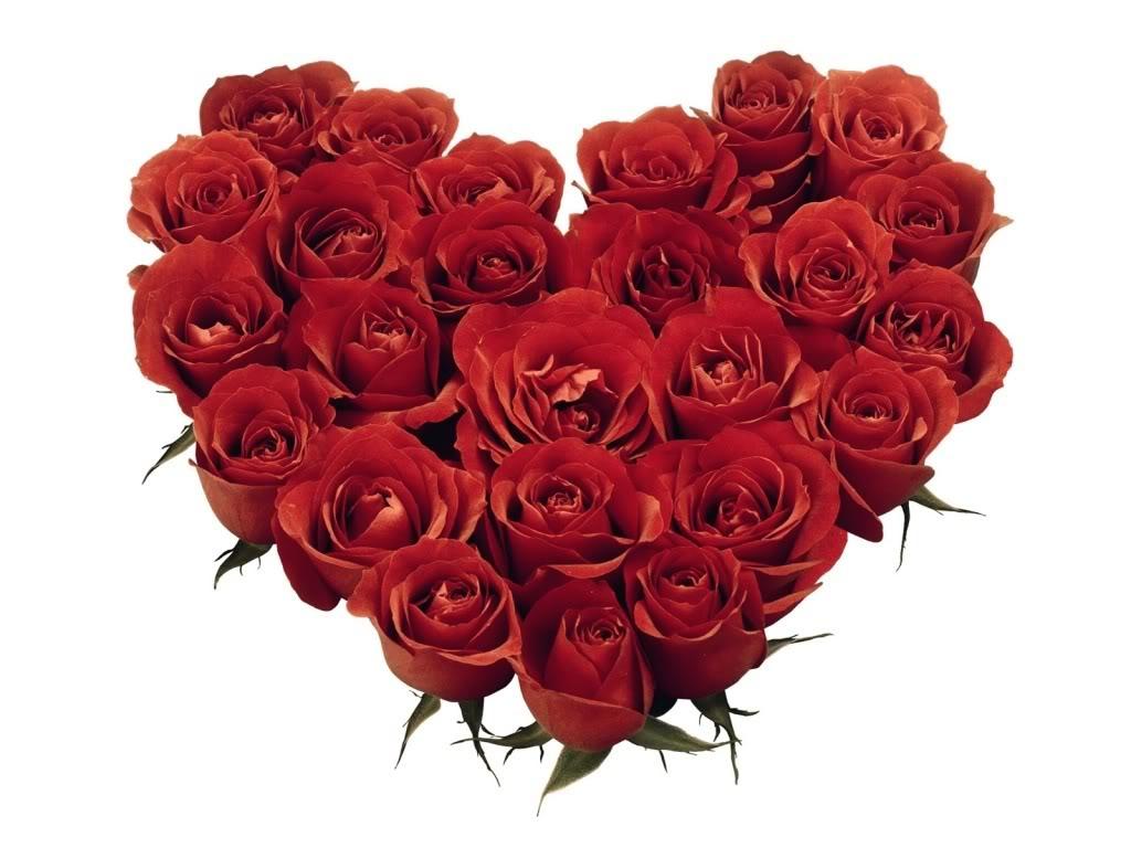 http://3.bp.blogspot.com/-r029hWgCrf4/Tzv4ml-L5YI/AAAAAAAAAIs/inwFYI1GDLI/s1600/ws_Red_Roses_Heart_1024x768.jpg