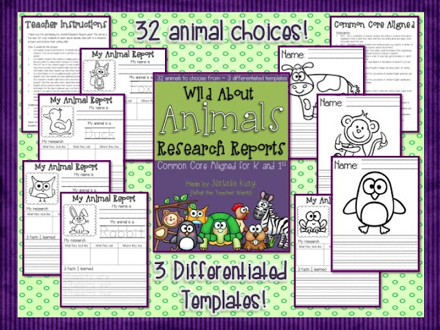 what the teacher wants   wild about animals research reports for k and 1st   common core aligned
