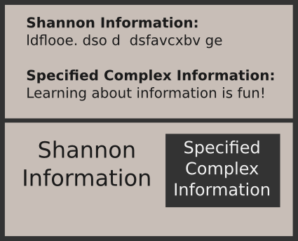 The Difference Between Shannon Information and Specified Complex Information