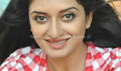 Vimala raman latest photos